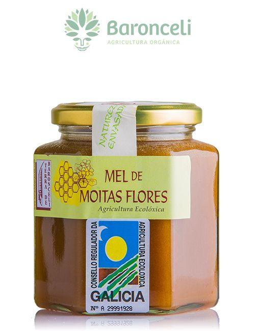 Miel de muchas flores